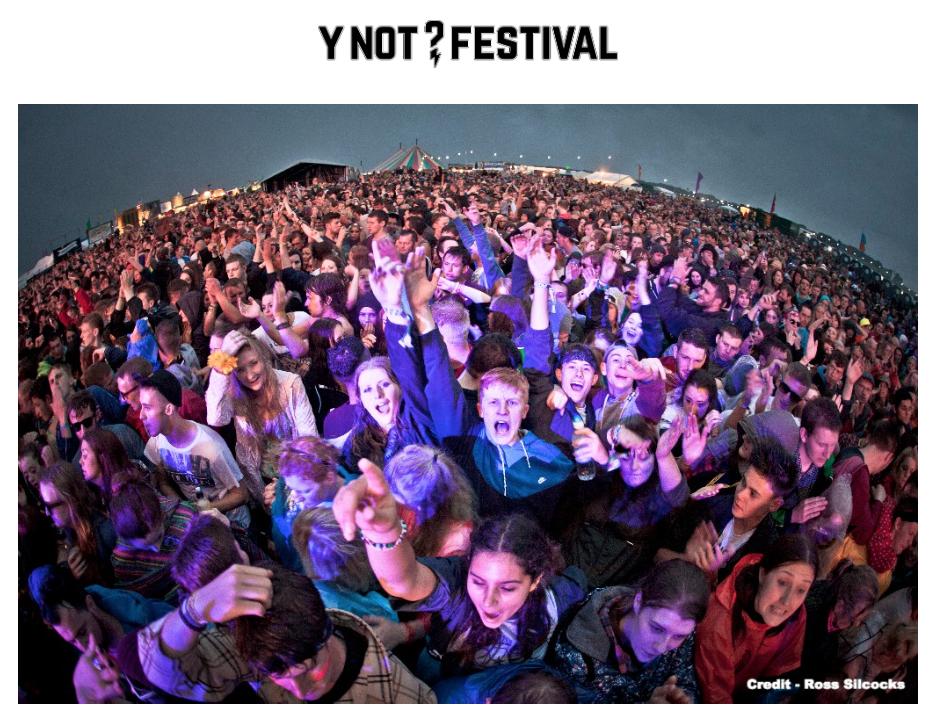 Y Not? Festival